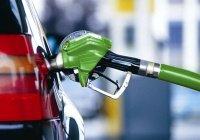 В Татарстане цены на бензин вырастут сильнее общероссийских