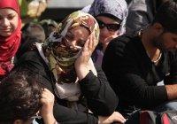 Ватикан займется интеграцией беженцев в Европе