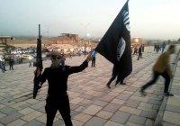 Во Францию вернулись почти 300 террористов ИГИЛ