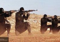 СМИ: ИГИЛ готовит террористов для новых атак в Европе
