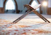 Что значит «упустить дунью»?