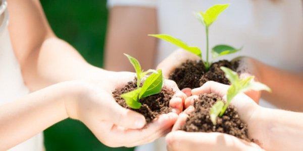 7 сентября челнинском технопарке пройдет 1-й форум для педагогов-экологов и учащихся