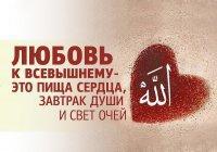 Шесть шагов к любви Аллаха