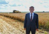 Минниханов: Это мало, но виды на урожай хорошие