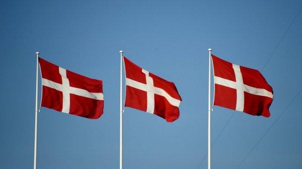 Власти Дании реинтегрируют боевиков ИГИЛ.