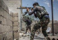 От ИГИЛ освобождено паче половины территории Ракки