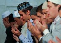 Татарстанским имамам начали дарить сим-карты с мусульманским тарифом