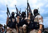 ИГИЛ угрожает «резать иранских собак» в центре Тегерана