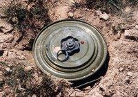 В Казани в мусоре нашли противотанковую мину