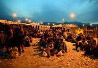 Почти 120 000 беженцев прибыли в Европу