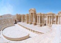 Российские археологи готовы помочь сохранить Пальмиру