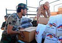 Россия доставила в Дамаск около 30 тонн гуманитарной помощи