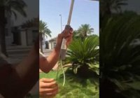 """""""Умный"""" зонт для хаджиев: как это выглядит?"""