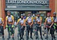 Лондонские хаджии на велосипедах прибыли в Медину