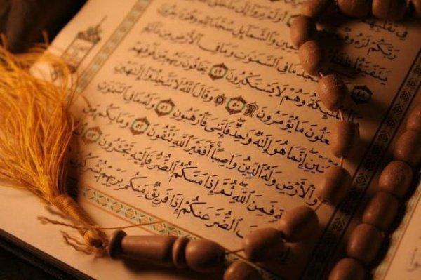«Лучшее поклонение — (это) мольба»