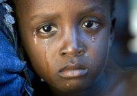 «Боко харам» использовала 83 ребенка как живые бомбы