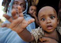 Тысячи мусульман-рохинья сбежали из Мьянмы