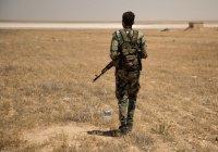 В Сирии действуют 25 тысяч боевиков ИГИЛ и «Джебхат ан-Нусры»