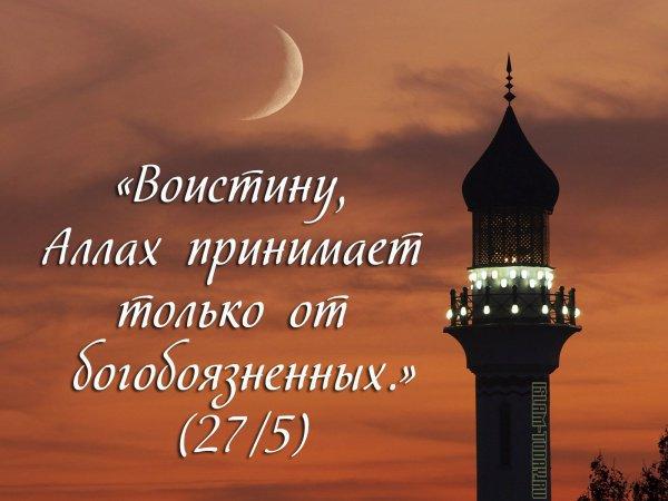 «Воистину, Аллах принимает только от богобоязненных.» (27/5)