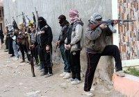 В Ираке нашли документы сотен боевиков ИГИЛ из Центральной Азии