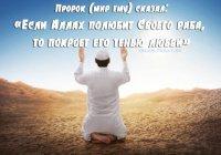 Поистине, любовь - это качество Аллаха