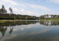 Заполнение Лебяжьих озер отложили на октябрь
