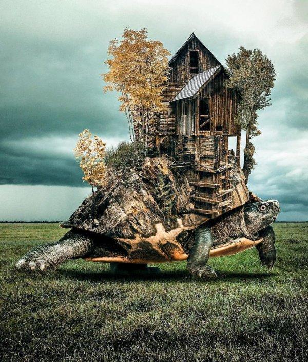 Работы турецкого художника, которые перевернут ваш мир с ног на голову
