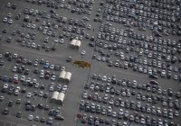 Татарстан стал лидером по продаже новых автомобилей