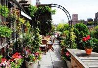 В Челнах появятся сады на крышах