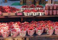 Фестиваль уличной еды впервые состоится в Нижнекамске