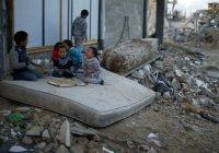 Единая база детей, вывезенных в ИГИЛ, будет создана в России