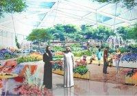 Парк Корана готовится к открытию в Дубае