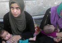 В тюрьмах Мосула находятся 1400 жен и детей ИГИЛ