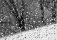 Башкортостан накрыло снегом (Видео)