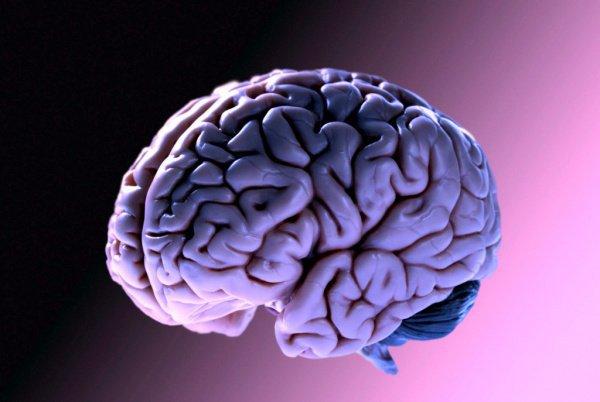 Ученые обнаружили код старения мозга