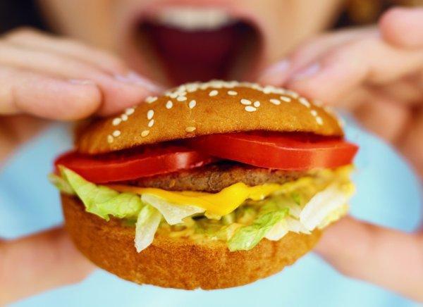 Грызуны, употреблявшие 60% от обычной для них порции, стали весить в 2 раза меньше