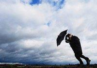 В Германии ветряную выставку эвакуировали из-за ветра