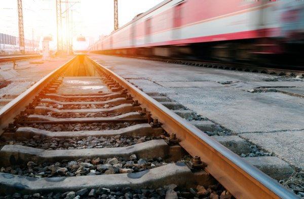 Позже на одной из станций поезд был остановлен, а злоумышленника задержали
