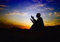 В Судный день наш Пророк (мир ему) будет обходить место сбора воскресших и станет взывать: «Моя умма! Моя умма!»