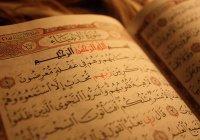 Коран, побывавший в Антарктиде, вернулся из Мекки