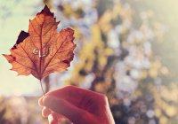 Способна ли вера увеличиваться или уменьшаться?