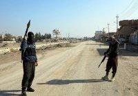 Эксперт заявил о «странных вещах», произошедших в Сирии
