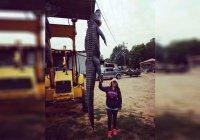 Многодетная голодная американка убила 4-метрового аллигатора (ФОТО)