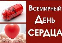 Один день из жизни сердца