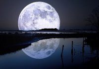 На Луне ученые построят «деревню»
