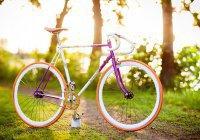 Огромная елка из велосипедов появится в Казани