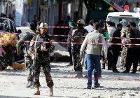 Террористы в Кабуле использовали для атаки овцу-смертницу