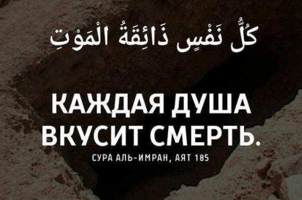 Сура «Аль-Гимран», 185 аят