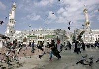 В Москве расскажут о культуре Саудовской Аравии