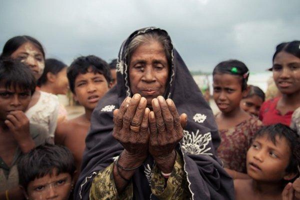 80% приверженцев ислама, численность которых достигает 2 миллионов, укрылись в соседних странах